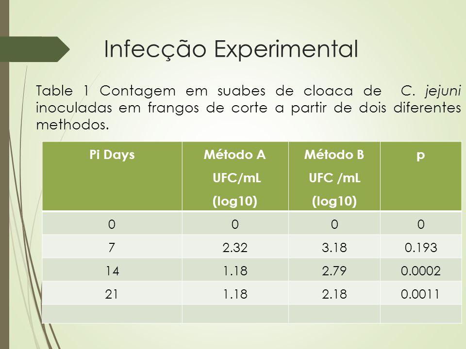 Infecção Experimental