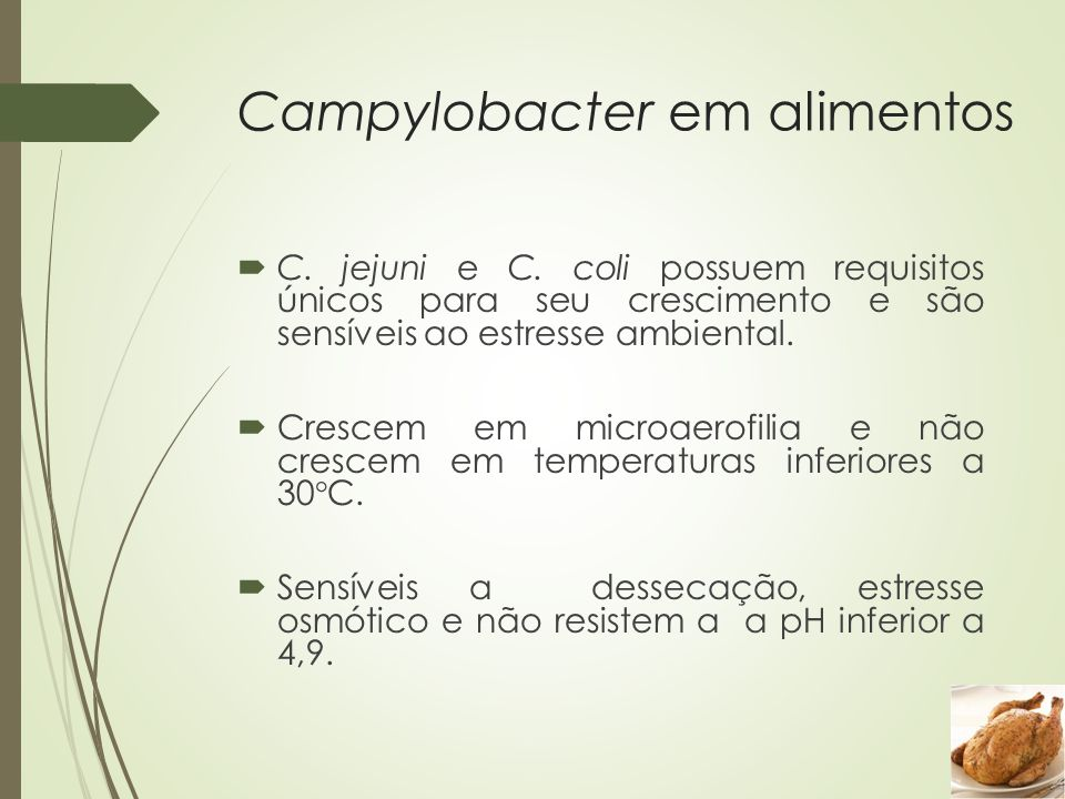Campylobacter em alimentos