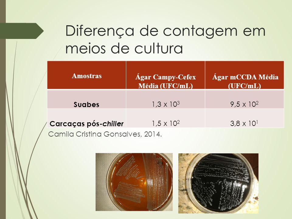 Diferença de contagem em meios de cultura