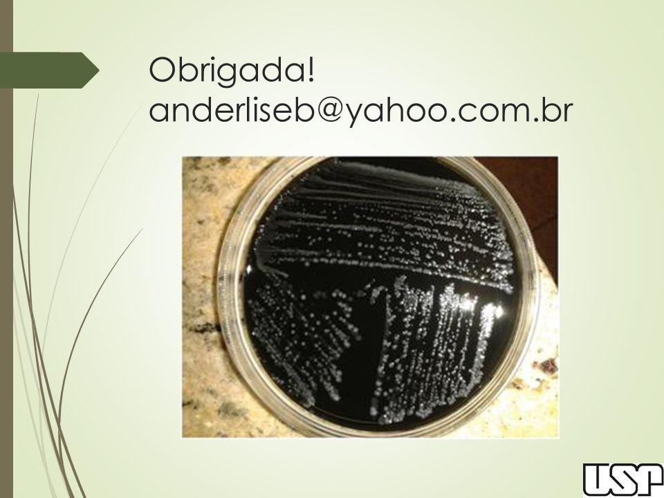 Obrigada! anderliseb@yahoo.com.br
