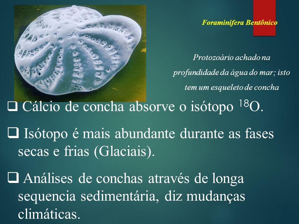 Isótopo é mais abundante durante as fases secas e frias (Glaciais).