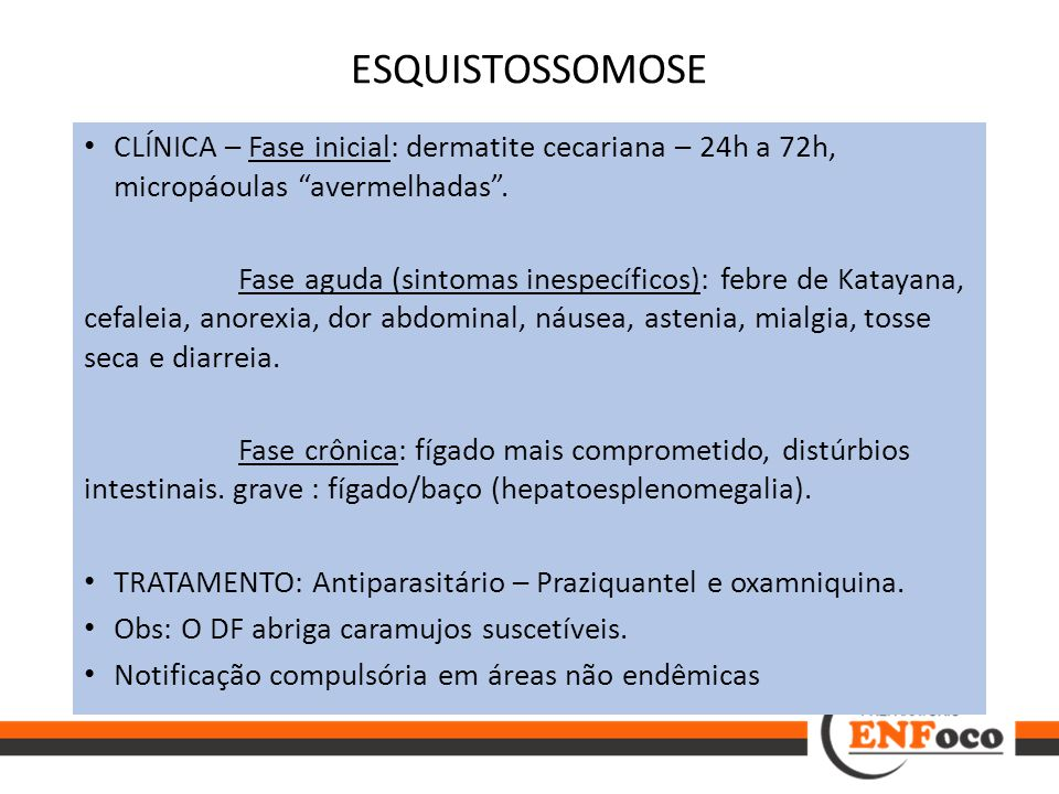 ESQUISTOSSOMOSE CLÍNICA – Fase inicial: dermatite cecariana – 24h a 72h, micropáoulas avermelhadas .