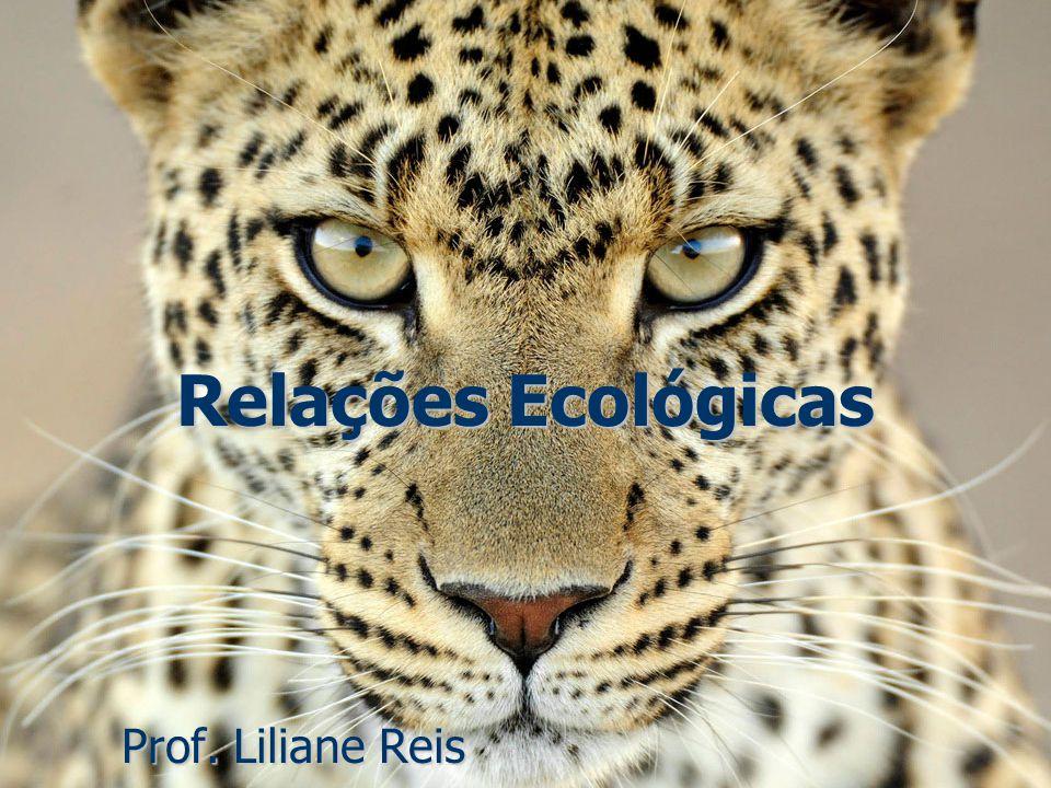 Relações Ecológicas Prof. Liliane Reis