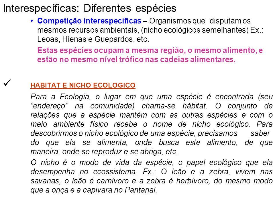 Interespecíficas: Diferentes espécies