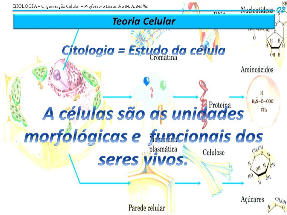 A células são as unidades morfológicas e funcionais dos seres vivos.