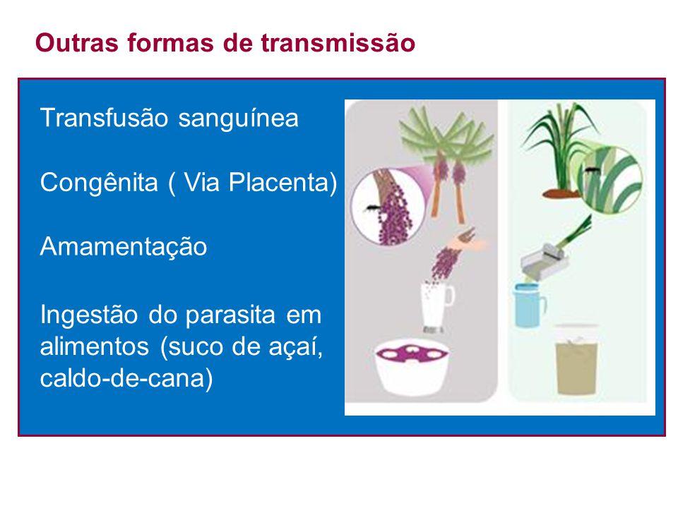 Outras formas de transmissão