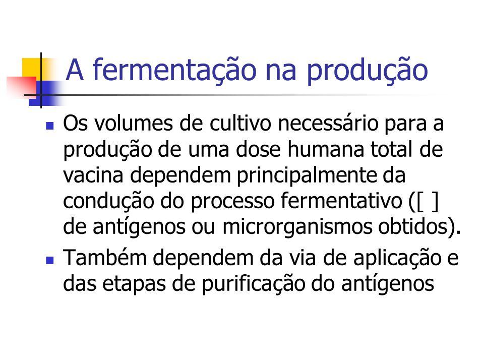 A fermentação na produção