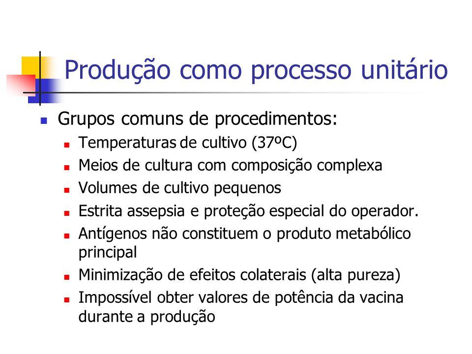 Produção como processo unitário