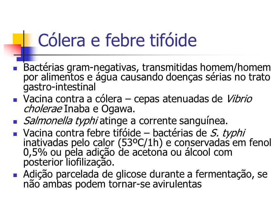 Cólera e febre tifóide Bactérias gram-negativas, transmitidas homem/homem por alimentos e água causando doenças sérias no trato gastro-intestinal.