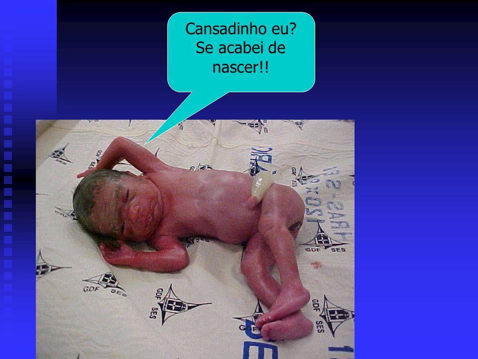 Cansadinho eu Se acabei de nascer!!