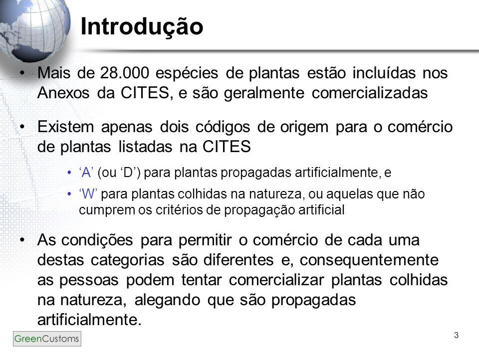 Introdução Mais de 28.000 espécies de plantas estão incluídas nos Anexos da CITES, e são geralmente comercializadas.