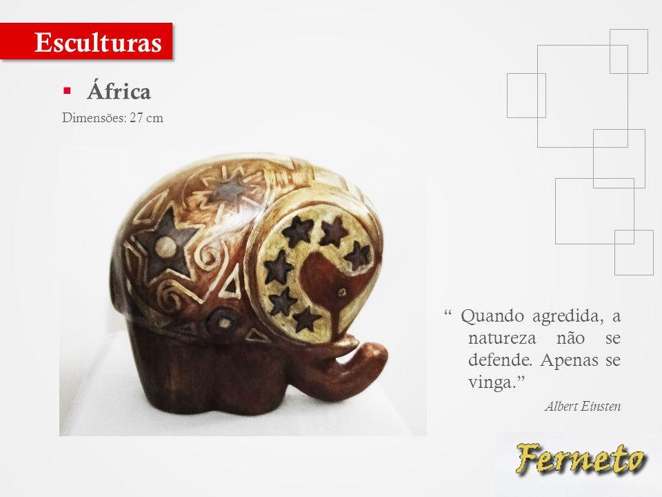 Esculturas África. Dimensões: 27 cm. Quando agredida, a natureza não se defende. Apenas se vinga.