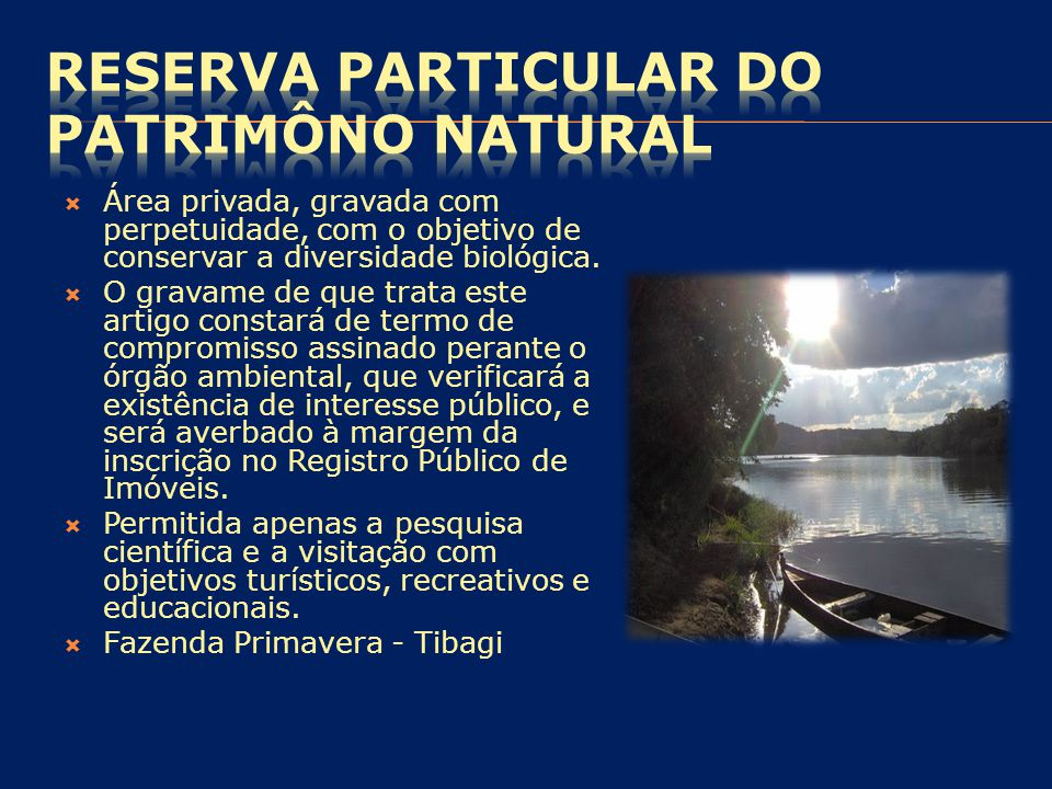 RESERVA PARTICULAR DO PATRIMÔNO NATURAL