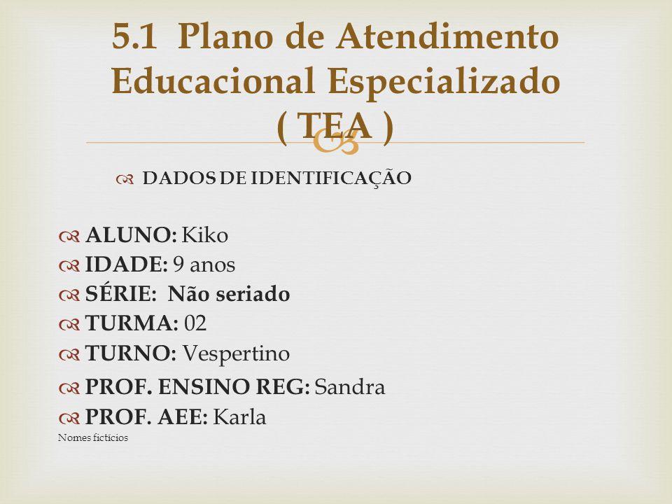 5.1 Plano de Atendimento Educacional Especializado ( TEA )