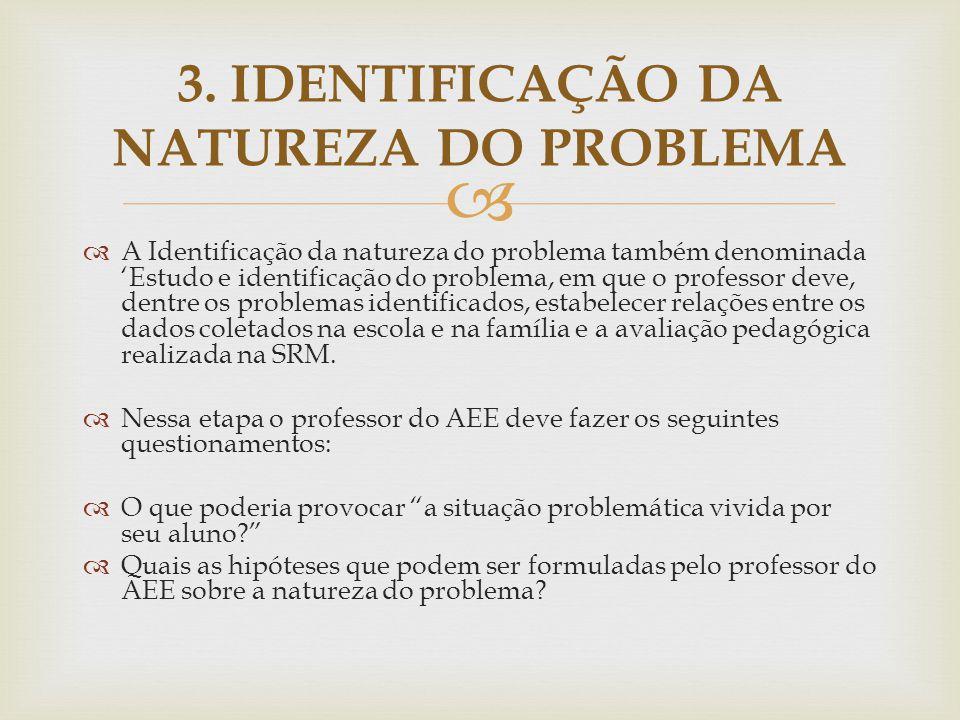 3. IDENTIFICAÇÃO DA NATUREZA DO PROBLEMA
