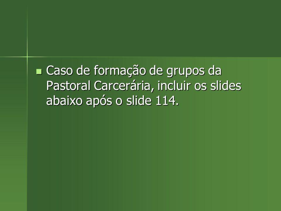 Caso de formação de grupos da Pastoral Carcerária, incluir os slides abaixo após o slide 114.