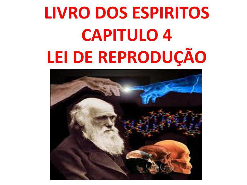 LIVRO DOS ESPIRITOS CAPITULO 4