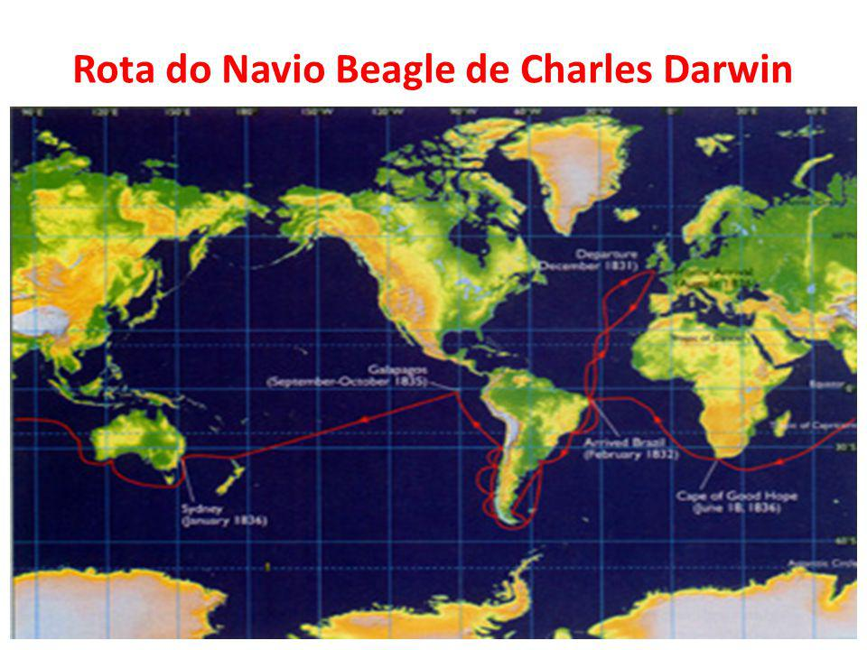 Rota do Navio Beagle de Charles Darwin