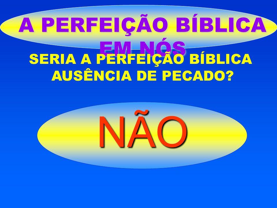 NÃO A PERFEIÇÃO BÍBLICA EM NÓS SERIA A PERFEIÇÃO BÍBLICA