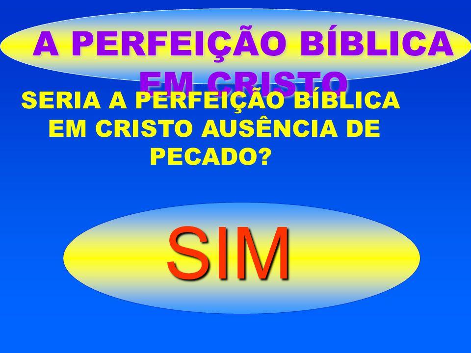 SIM A PERFEIÇÃO BÍBLICA EM CRISTO SERIA A PERFEIÇÃO BÍBLICA
