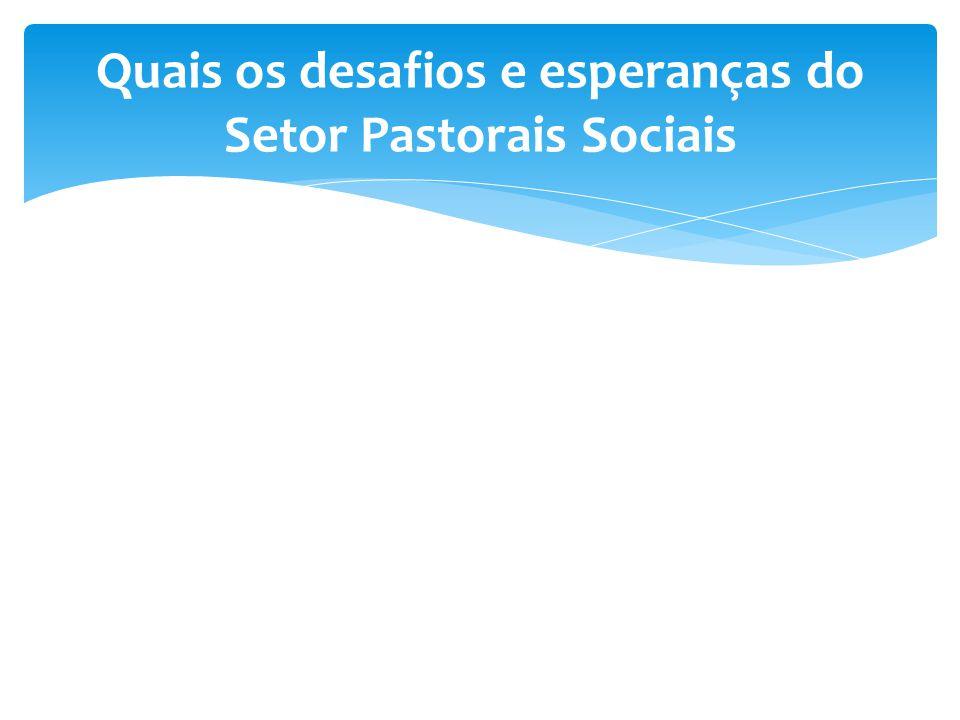 Quais os desafios e esperanças do Setor Pastorais Sociais