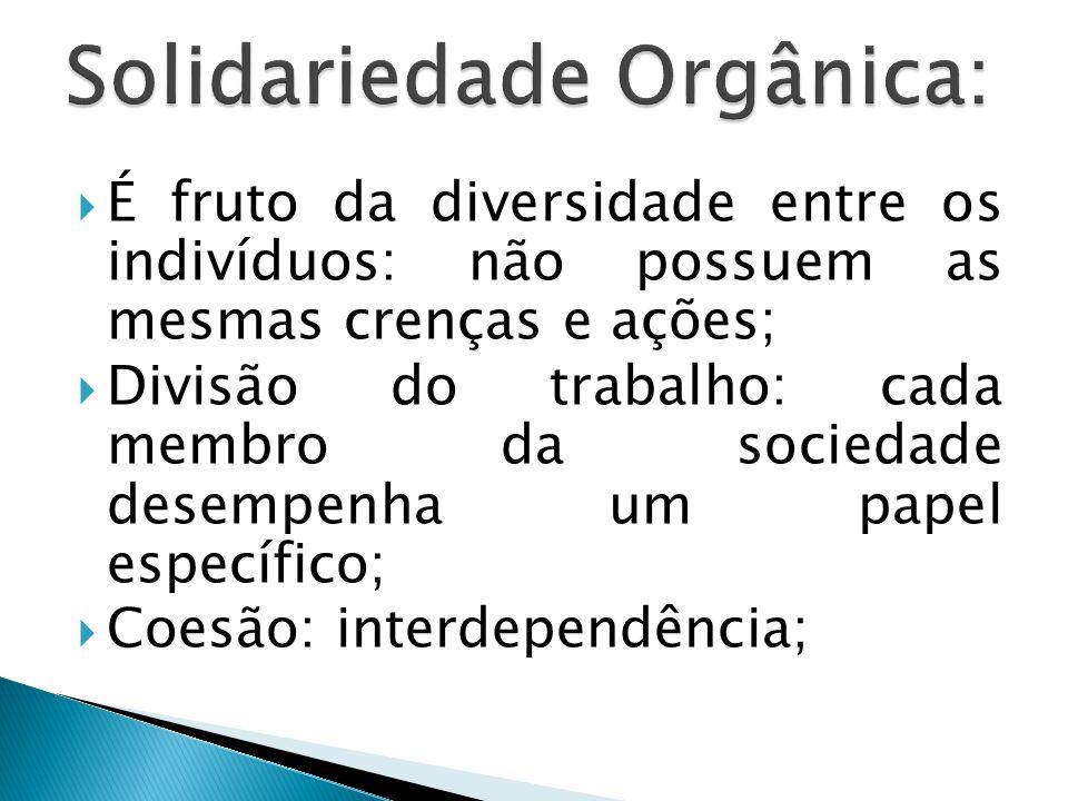 Solidariedade Orgânica: