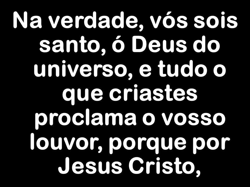 Na verdade, vós sois santo, ó Deus do universo, e tudo o que criastes proclama o vosso louvor, porque por Jesus Cristo,