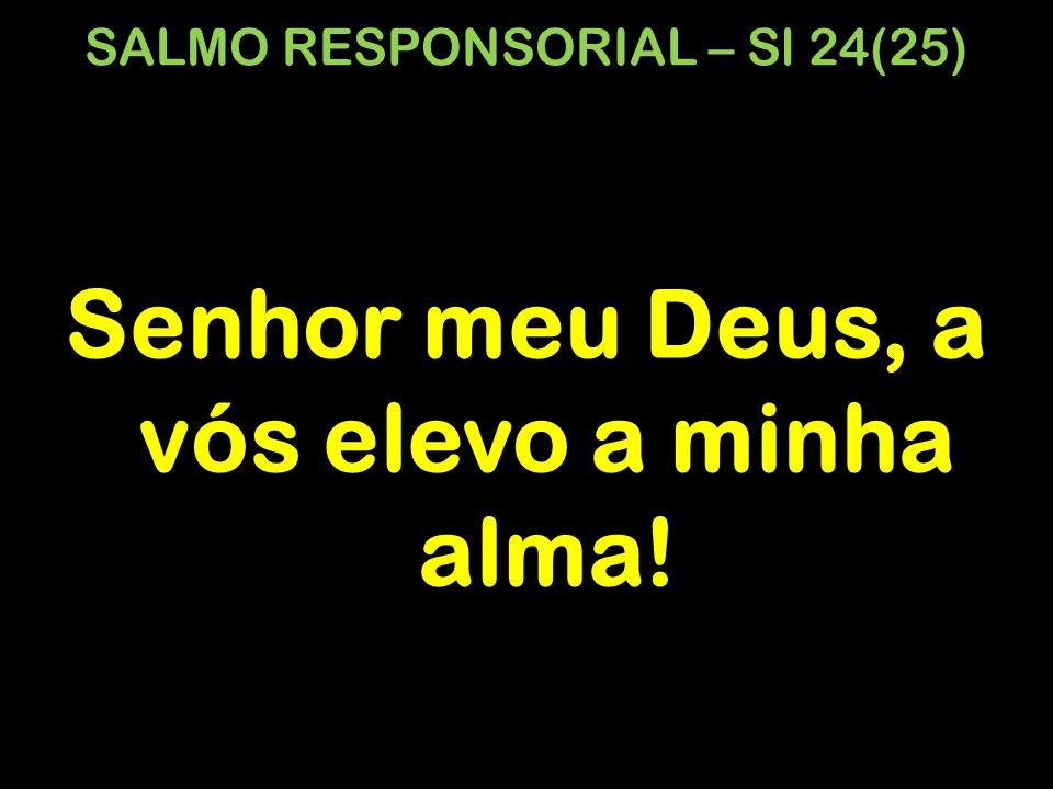 SALMO RESPONSORIAL – Sl 24(25)