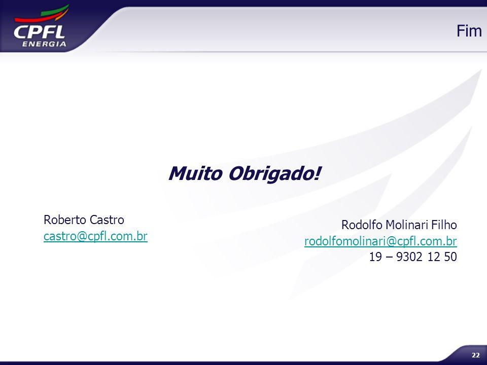 Muito Obrigado! Fim Roberto Castro castro@cpfl.com.br