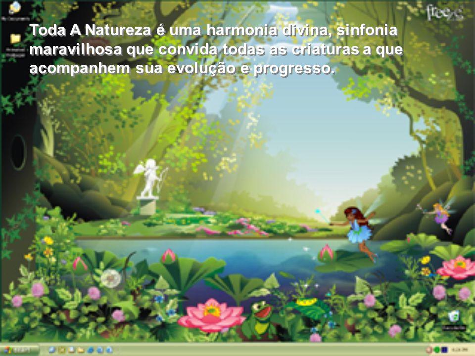 Toda A Natureza é uma harmonia divina, sinfonia maravilhosa que convida todas as criaturas a que acompanhem sua evolução e progresso.