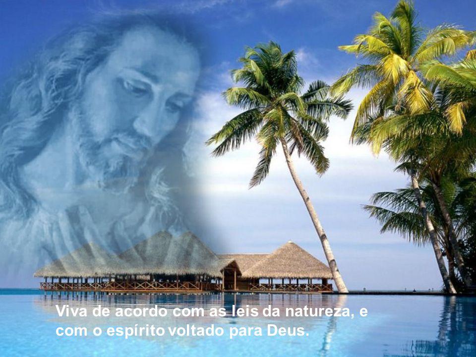 Viva de acordo com as leis da natureza, e com o espírito voltado para Deus.