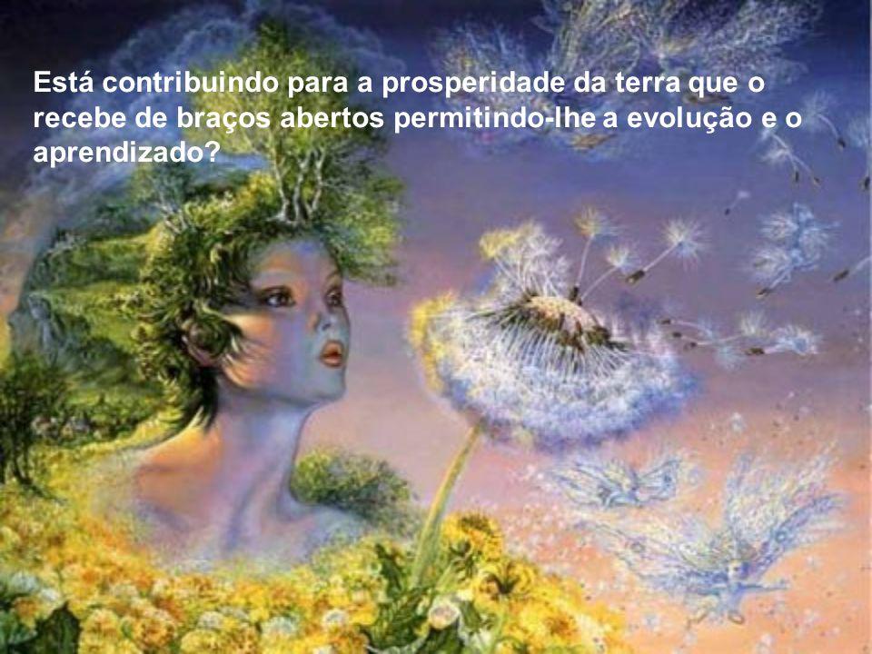 Está contribuindo para a prosperidade da terra que o recebe de braços abertos permitindo-lhe a evolução e o aprendizado