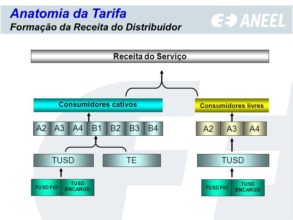 Anatomia da Tarifa Formação da Receita do Distribuidor