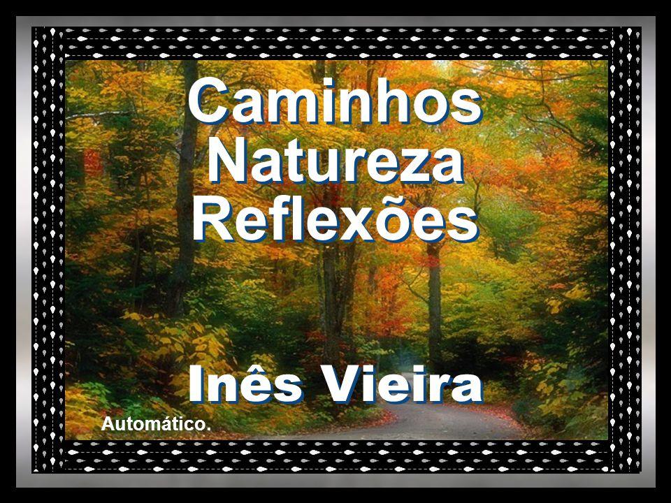 Caminhos Natureza Reflexões