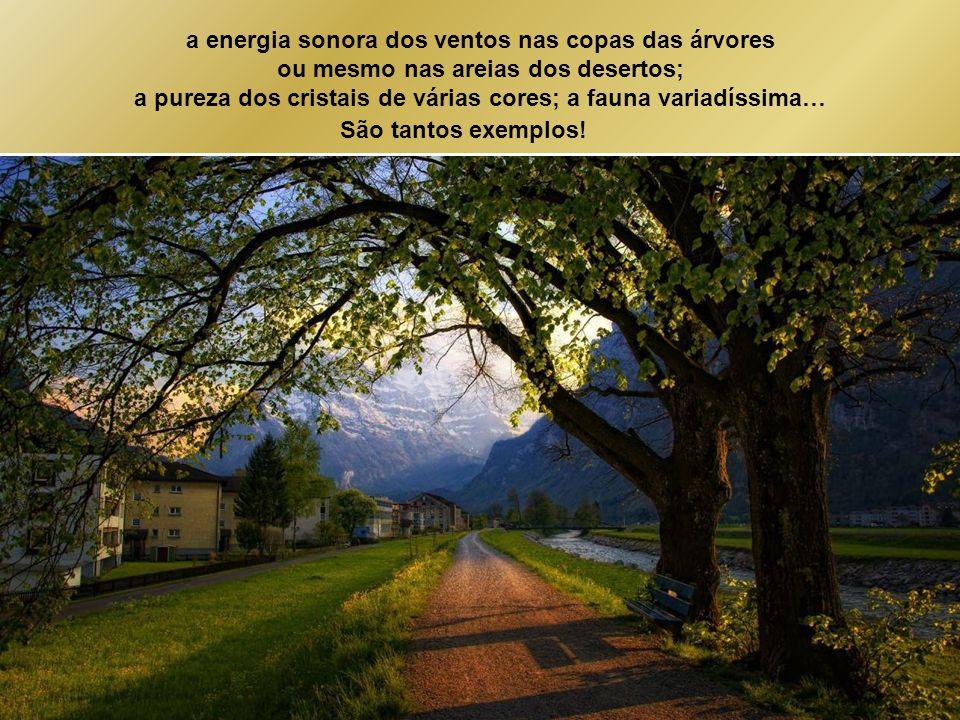 a energia sonora dos ventos nas copas das árvores
