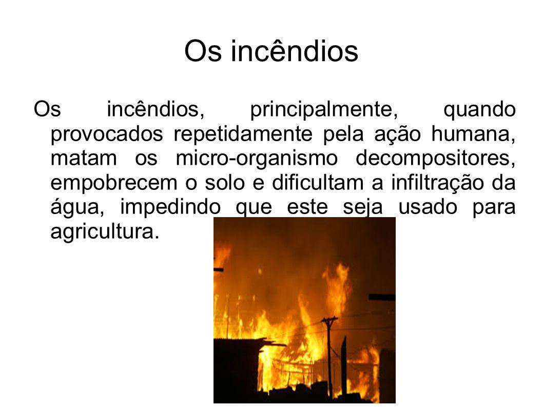 Os incêndios