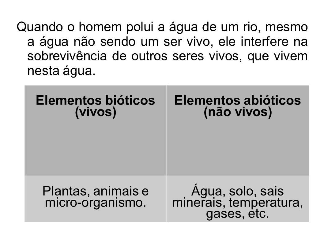 Elementos bióticos (vivos) Elementos abióticos (não vivos)