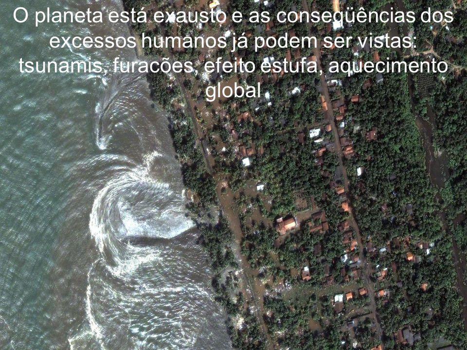 O planeta está exausto e as conseqüências dos excessos humanos já podem ser vistas: tsunamis, furacões, efeito estufa, aquecimento global