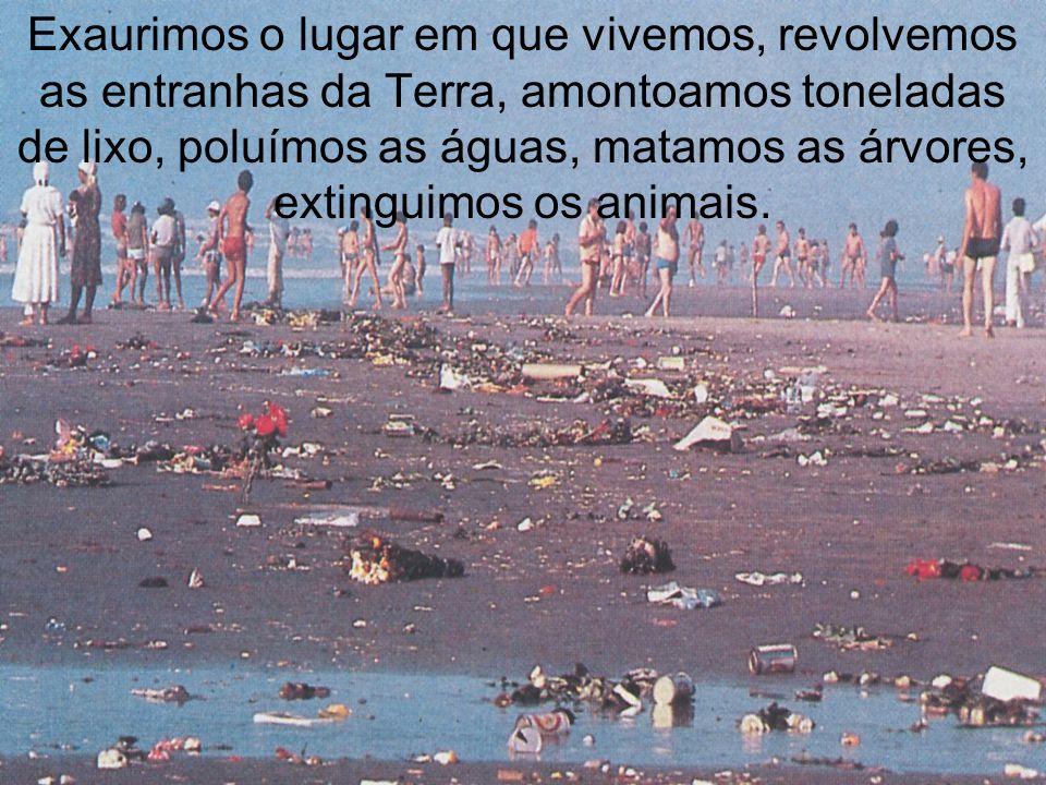 Exaurimos o lugar em que vivemos, revolvemos as entranhas da Terra, amontoamos toneladas de lixo, poluímos as águas, matamos as árvores, extinguimos os animais.