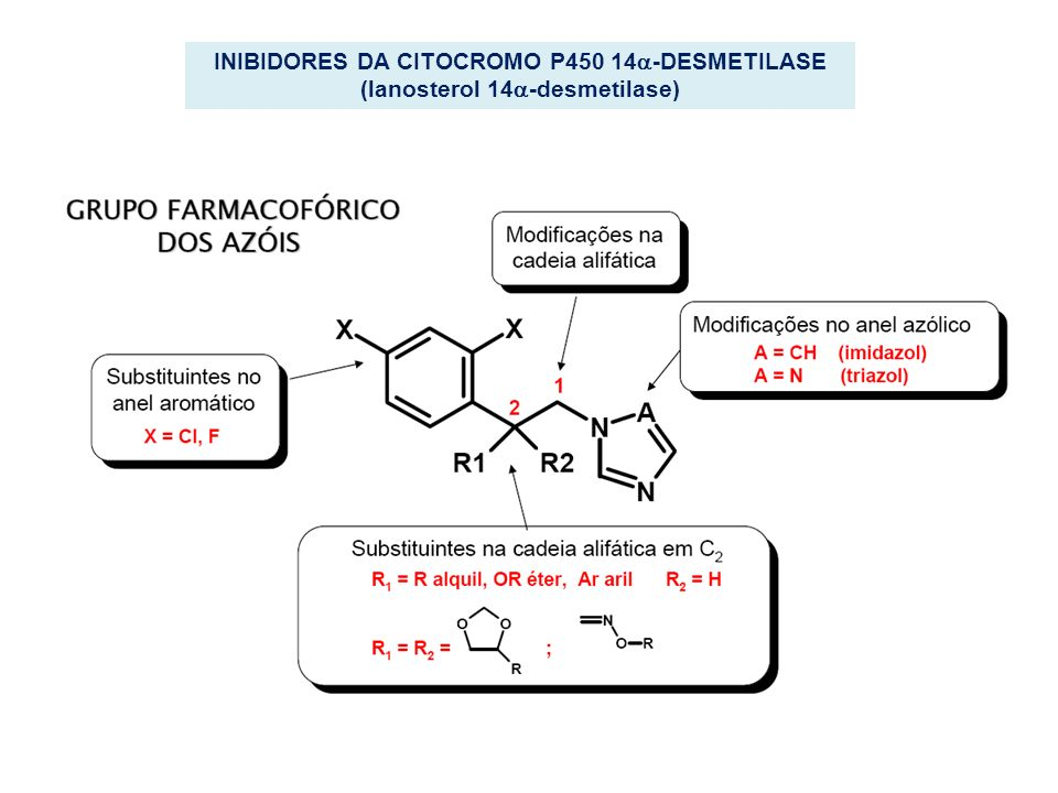 INIBIDORES DA CITOCROMO P450 14-DESMETILASE (lanosterol 14-desmetilase)