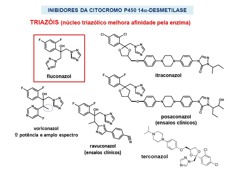 INIBIDORES DA CITOCROMO P450 14-DESMETILASE