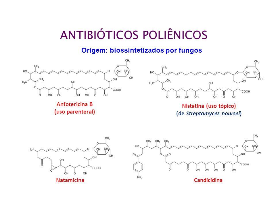 Origem: biossintetizados por fungos