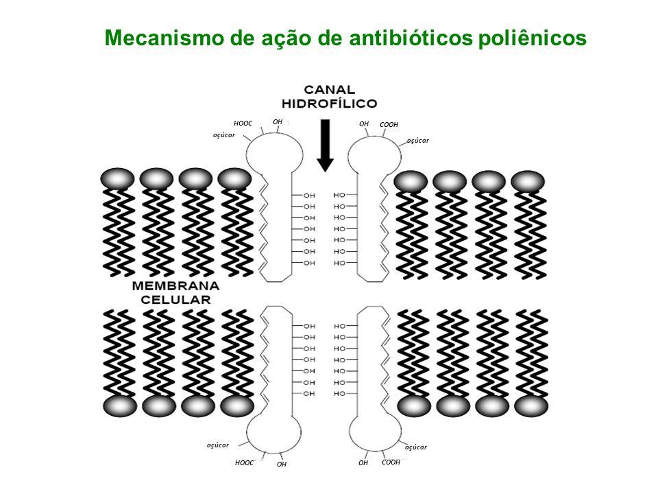Mecanismo de ação de antibióticos poliênicos
