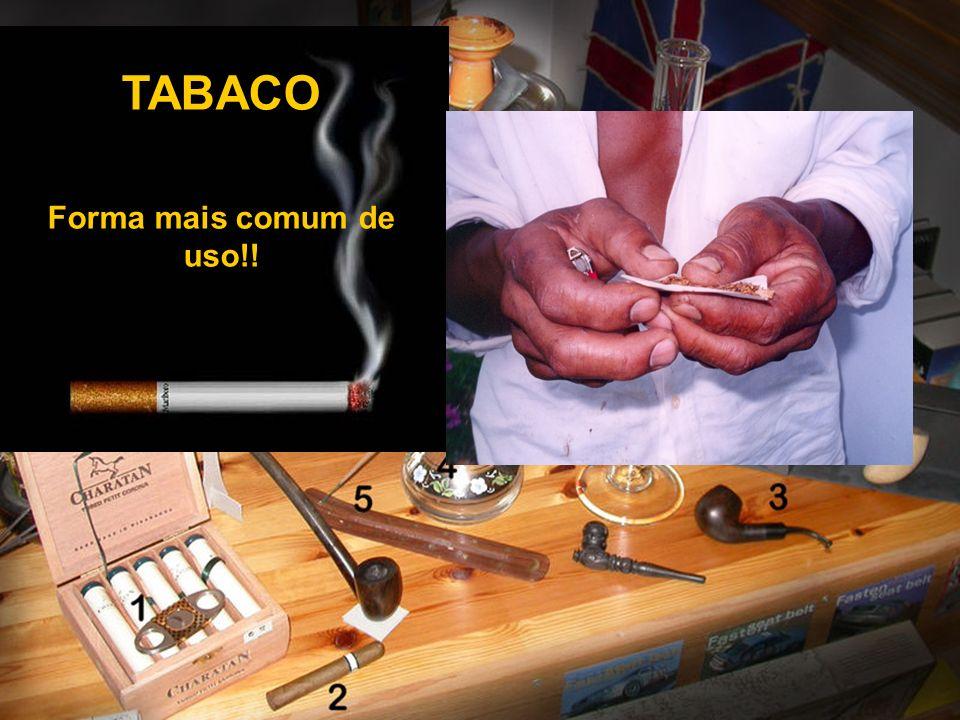 TABACO Forma mais comum de uso!!