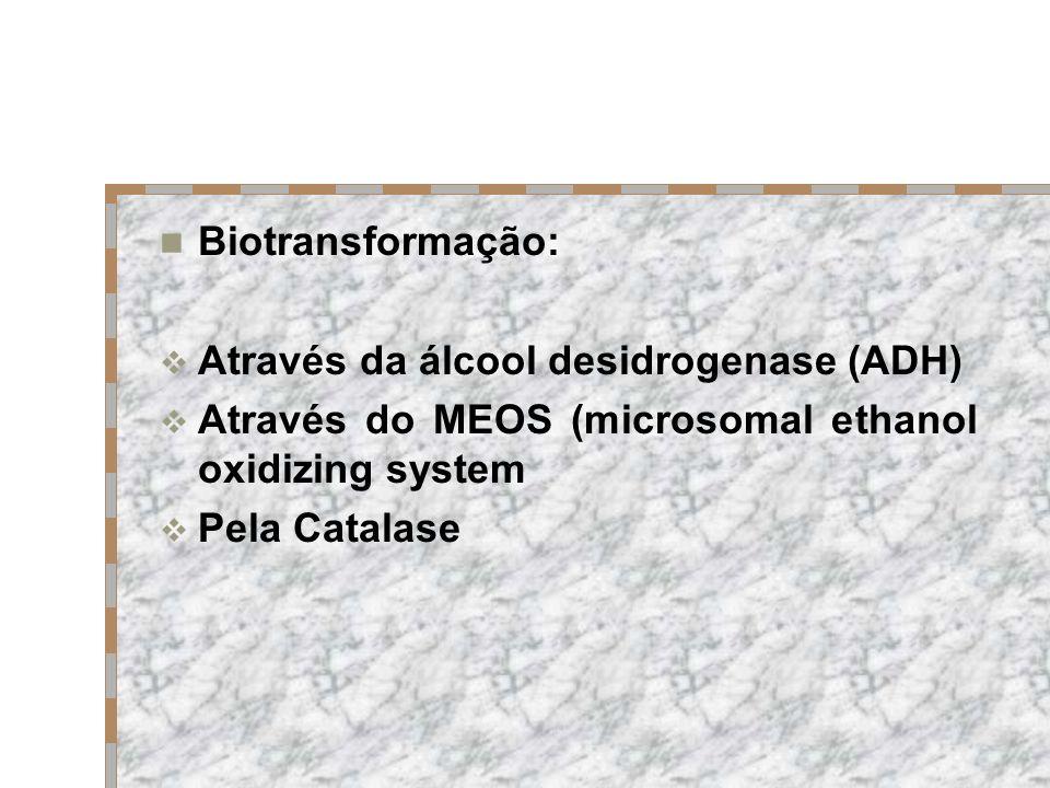 Biotransformação: Através da álcool desidrogenase (ADH) Através do MEOS (microsomal ethanol oxidizing system.