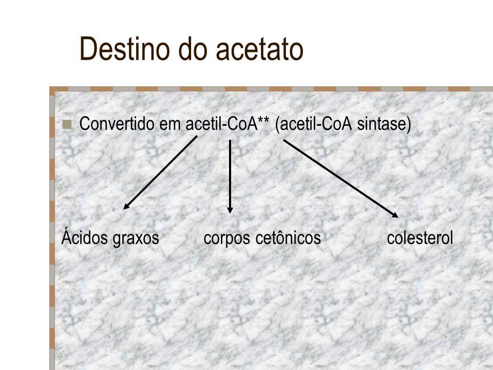 Destino do acetato Convertido em acetil-CoA** (acetil-CoA sintase)