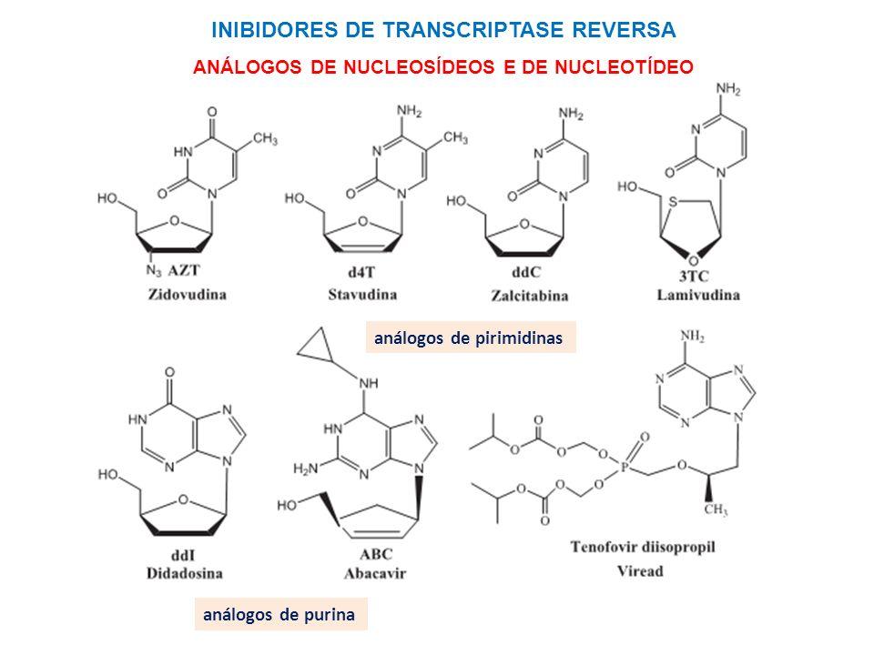 INIBIDORES DE TRANSCRIPTASE REVERSA ANÁLOGOS DE NUCLEOSÍDEOS E DE NUCLEOTÍDEO