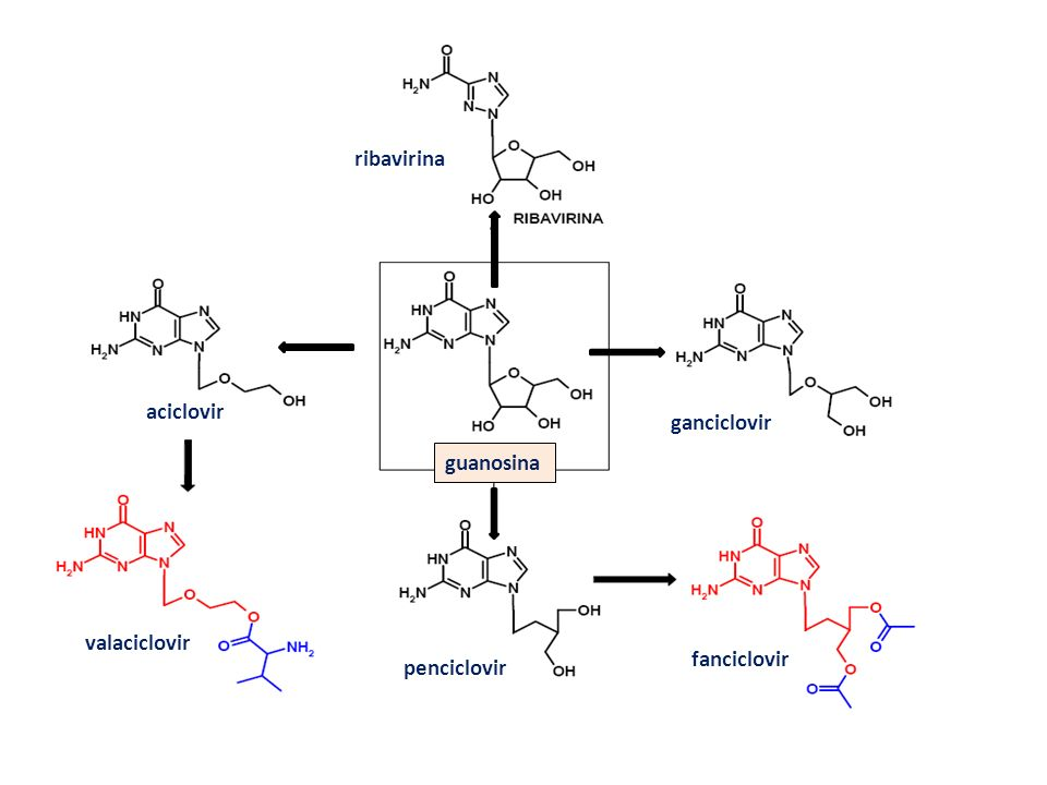 ribavirina aciclovir ganciclovir guanosina valaciclovir fanciclovir penciclovir
