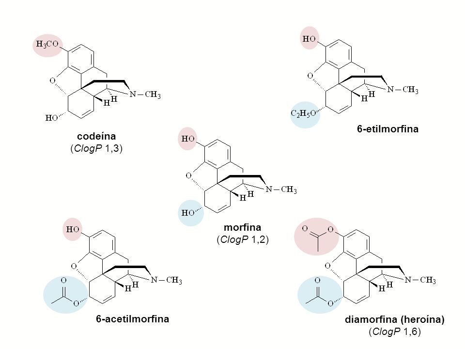 6-etilmorfinacodeína.(ClogP 1,3) morfina. (ClogP 1,2) 6-acetilmorfina.