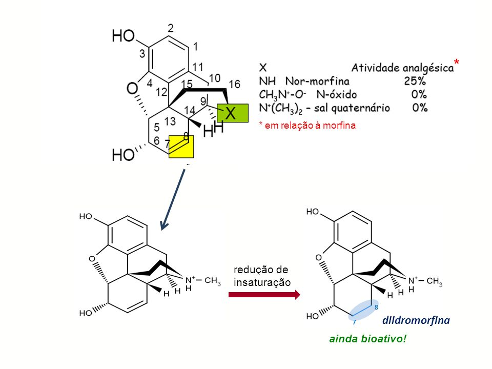 * diidromorfina redução de insaturação R ainda bioativo!